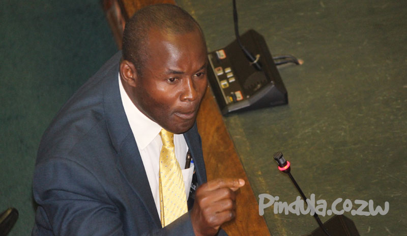 Temba Mliswa Stresses Point in Parliament