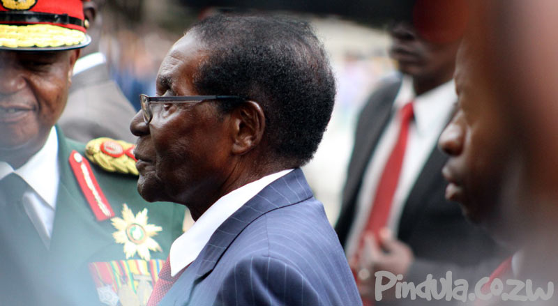 President Robert Mugabe Side View