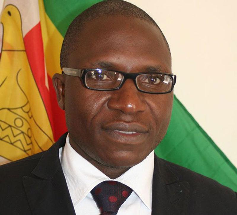Jacob Ngarivhume, Transform Zimbabwe