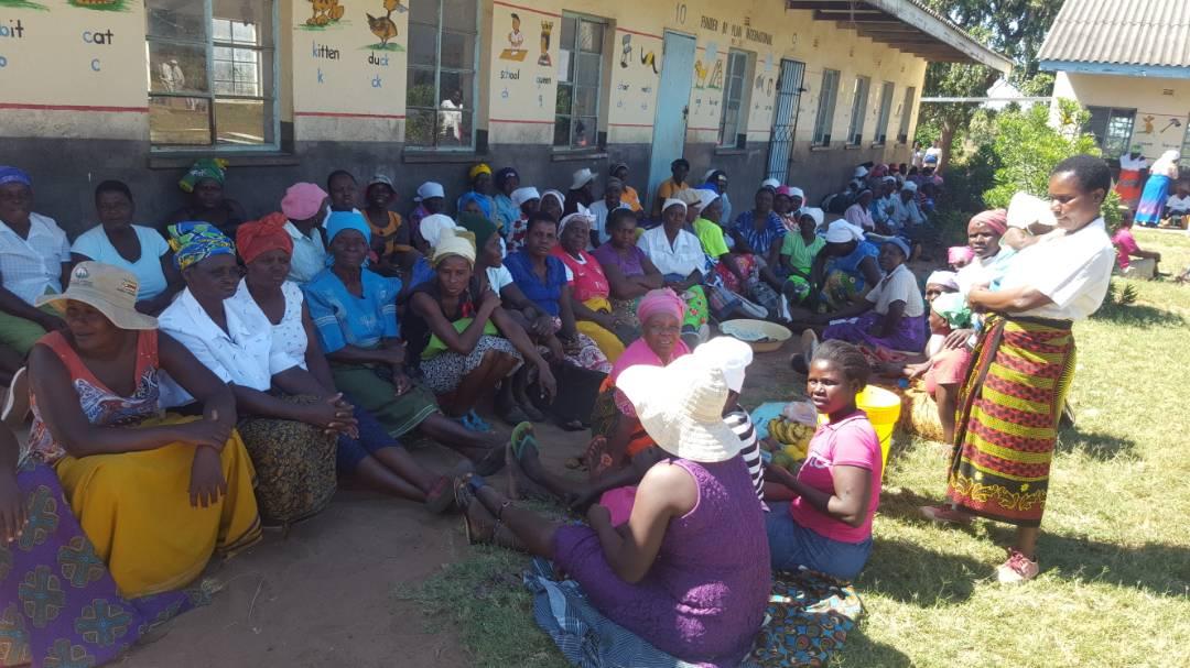 Zanu-PF Primaries 2018 - Checheche Waiting