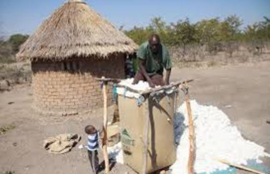 Cotton financially excluded farmers