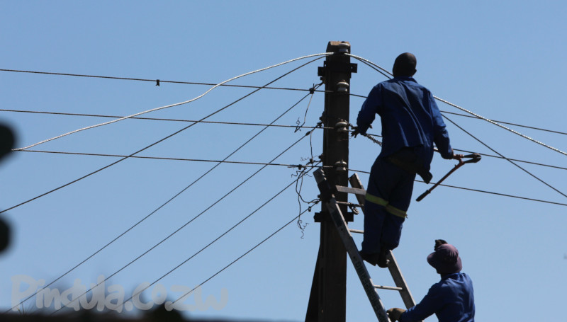 ZESA Workers on a pole