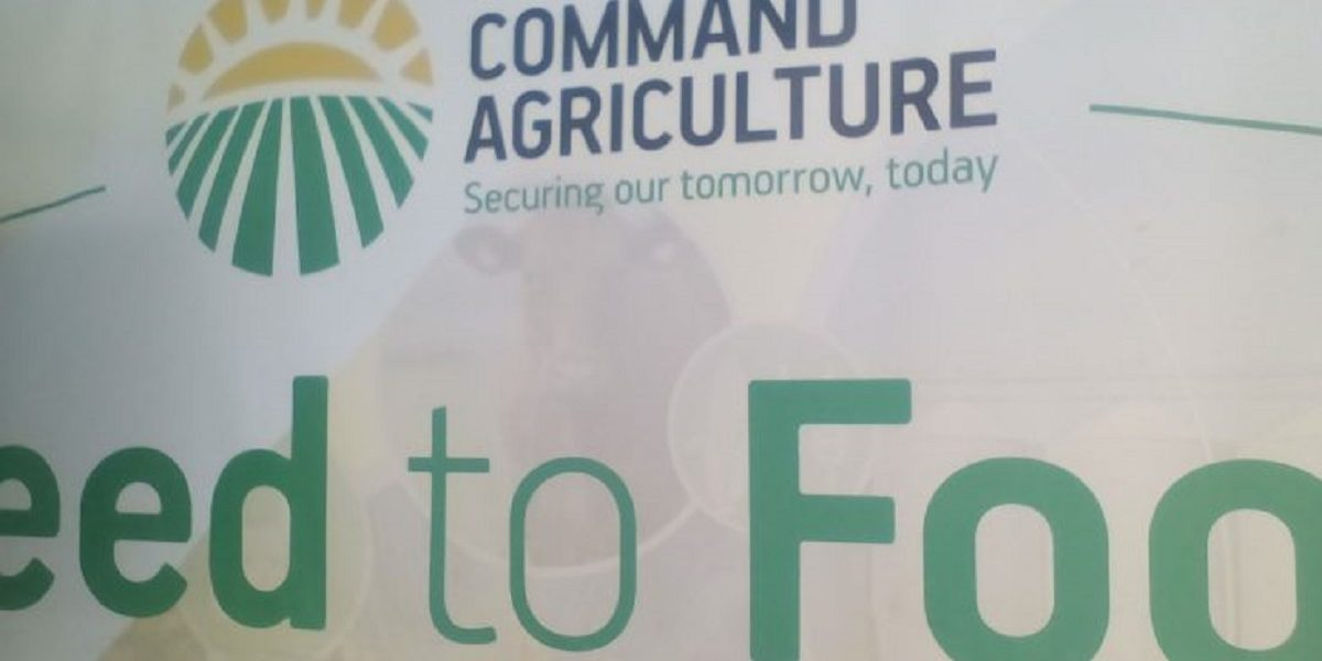 Command Agriculture Loans