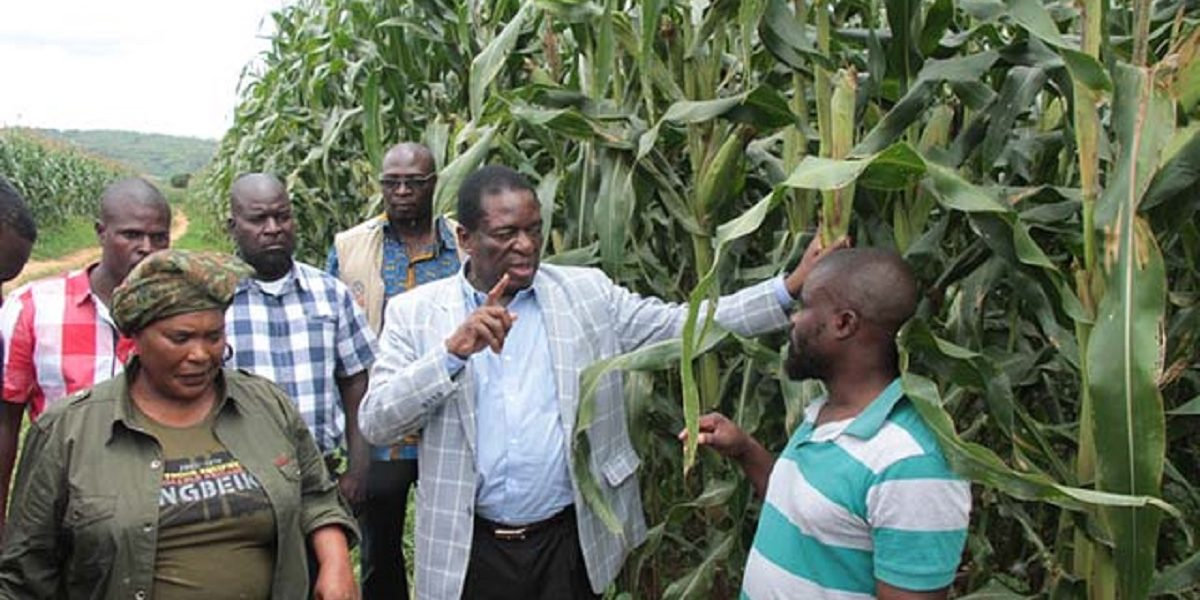 MNANGAGWA COMMAND AGRICULTURE agricultural revolution Zimbabwe