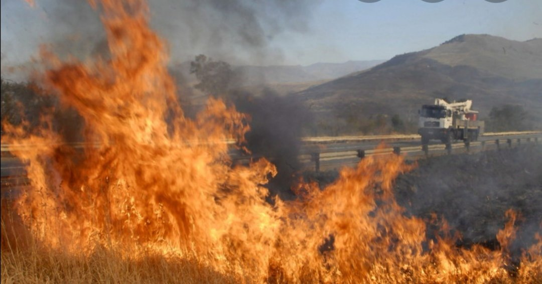 EMA: Veld Fires Killed 3 People, Destroyed Properties Worth US$187 000