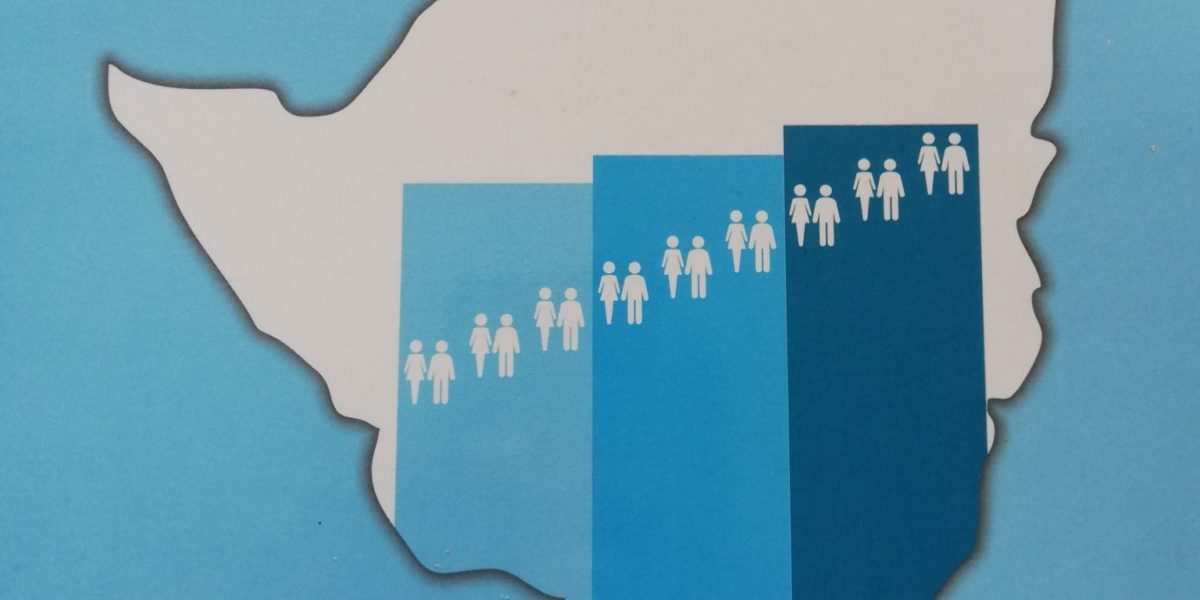 ZIMSTAT Census Population Field Mapping And Household Listing