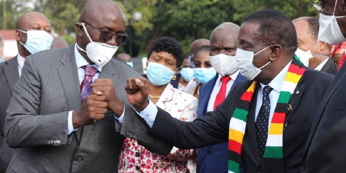 President Emmerson Mnangagwa and Kuda Tagwirei