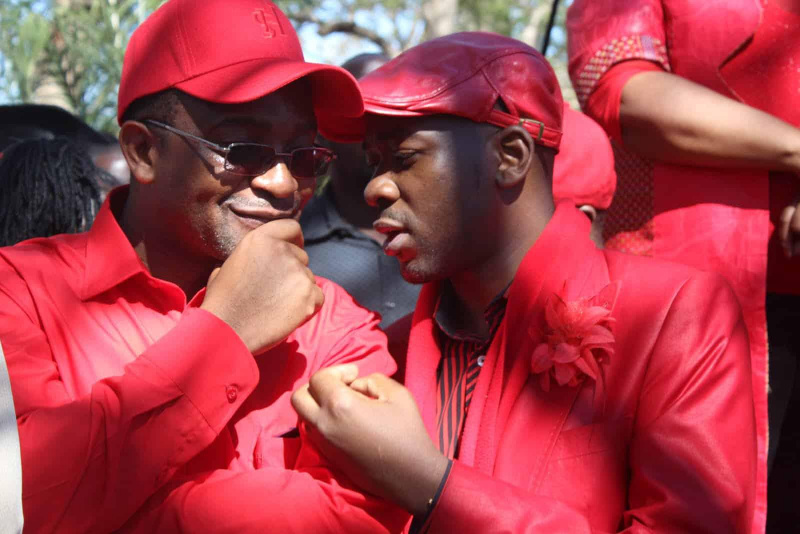 MDC-T And MDC Alliance Pact: To Field 1 Candidate In Mat South By-Elections