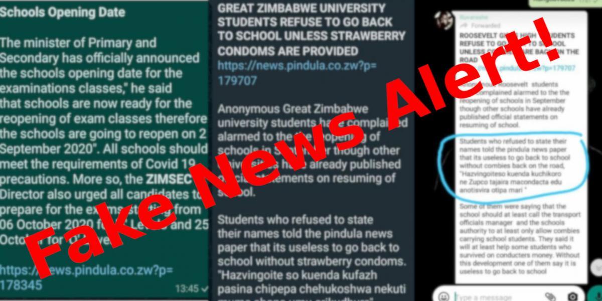Pindula Fake News Alert