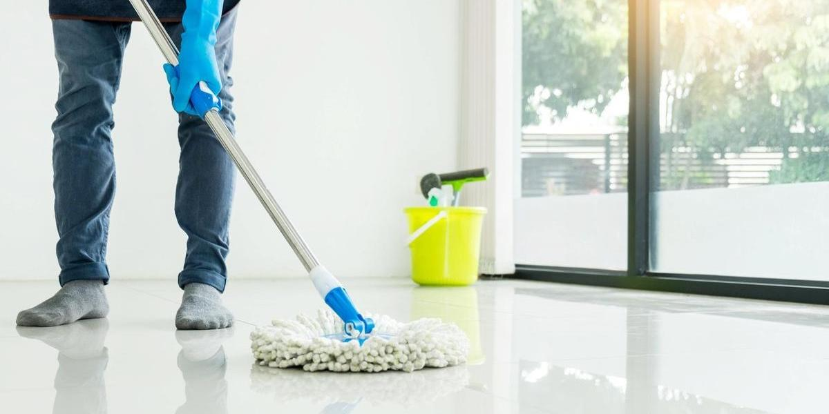 domestic worker maid cleaner
