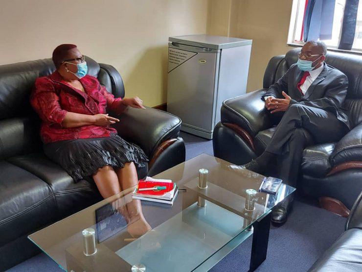 Douglas Mwonzora and Thokozani Khupe