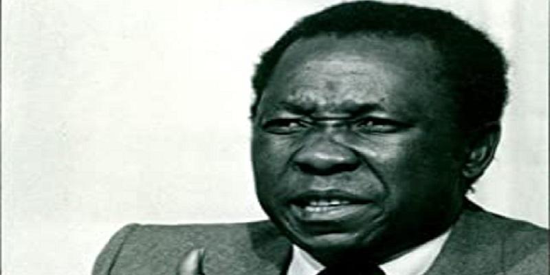 Edison Zvobgo Zimbabwe independence