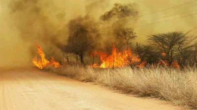Veld fires - deforestation