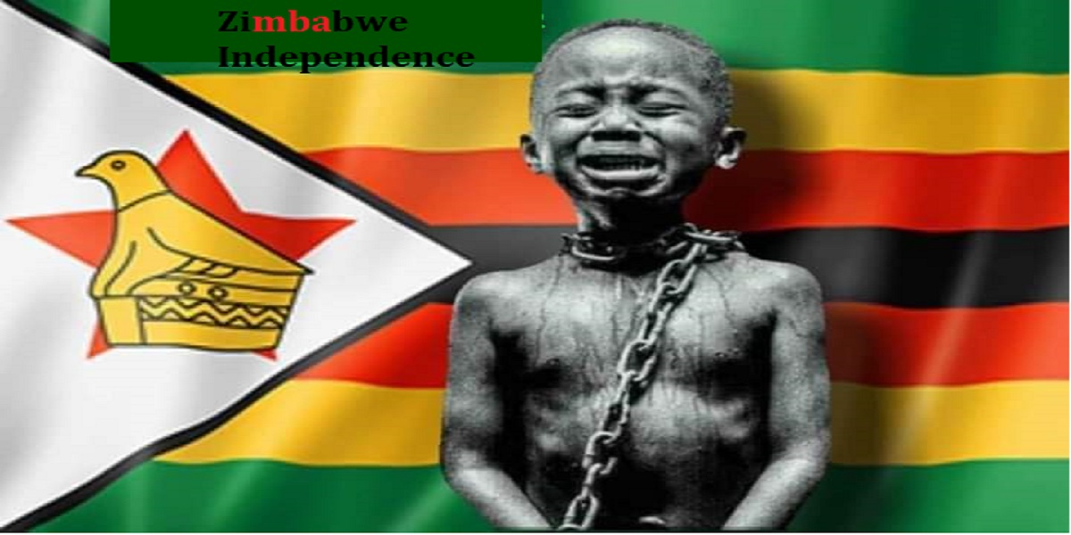 ZIMLIVES MATTER CHAIN FLAG Zimbabwe Independence bouncing cheque